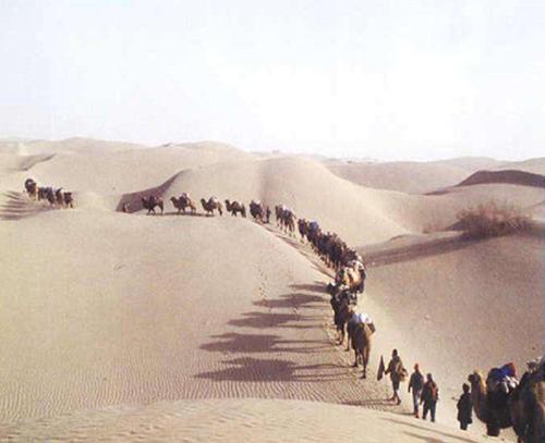 沙漠户外拓展